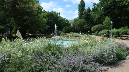Uniblog: Spaziergang im Károlyi-Garten (Károlyi-kert)